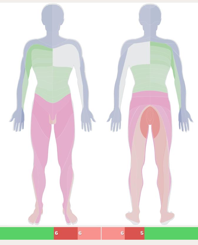 Diagnostická mapa zatížení vnitřního systému (kůže)